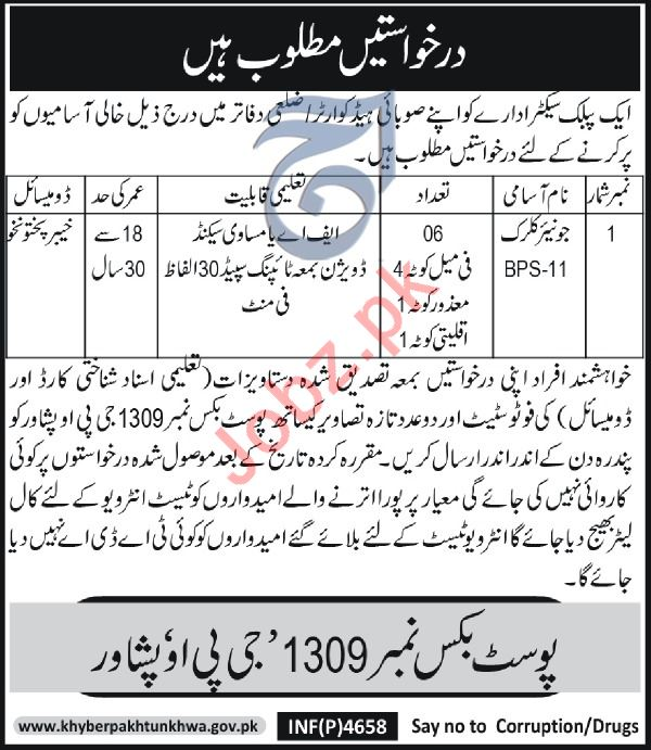 Public Sector Organization Peshawar Jobs 2019 for Clerk