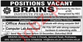 Brains Institute Peshawar KPK Jobs 2019