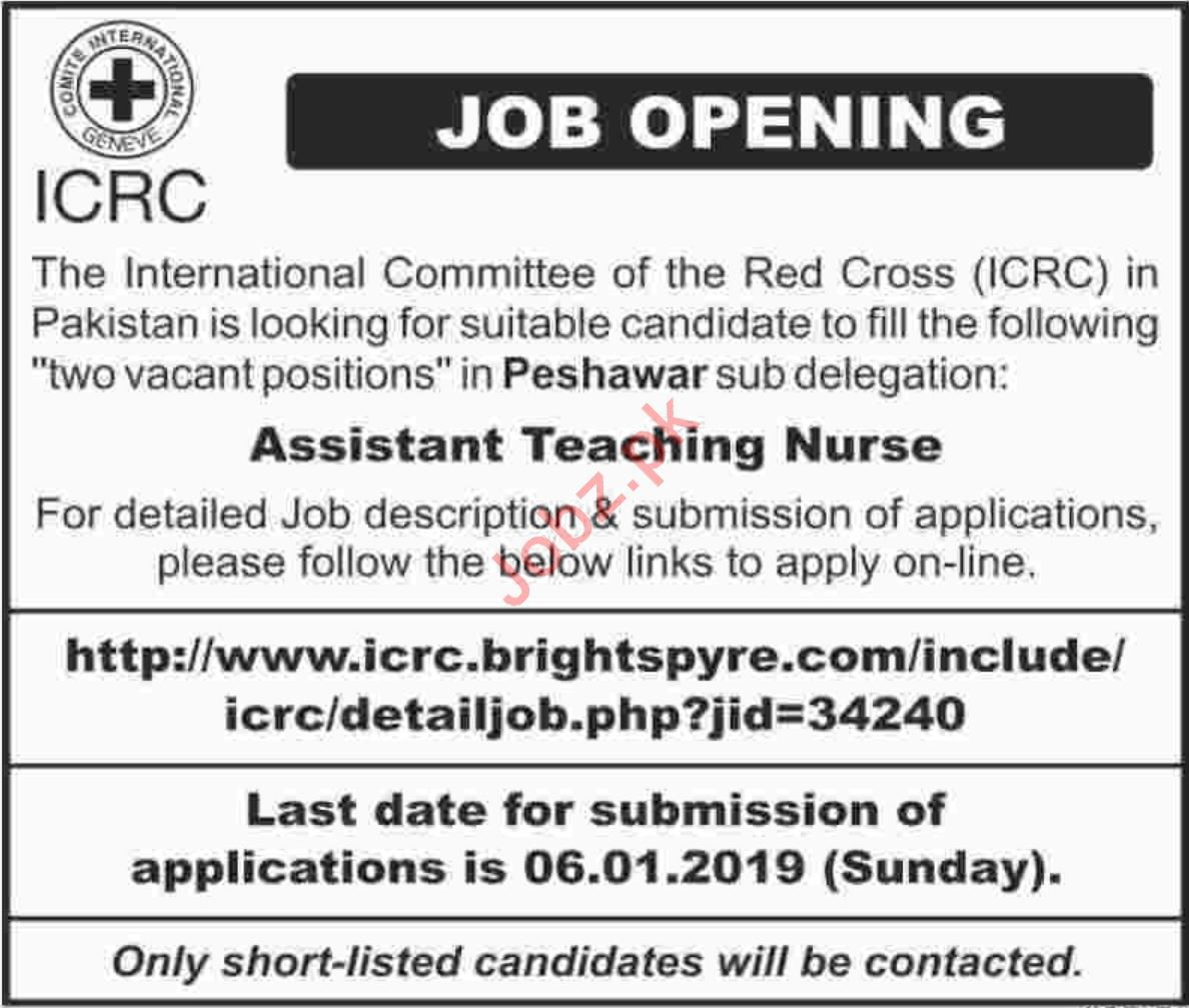 Assistant Teaching Nurse Jobs at ICRC