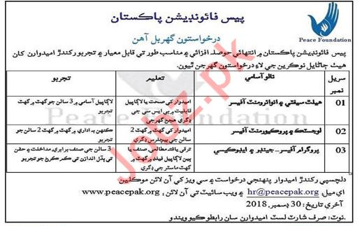 Peace Foundation Pakistan Safety Environment Officer Jobs