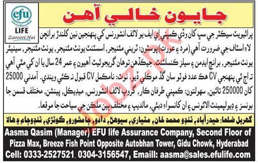 Efu Life Assurance Ltd Trainee Manager Jobs