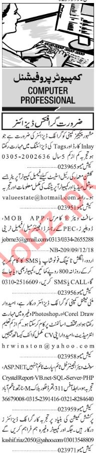 Jang Sunday Classified Ads 9th Dec 2018 for IT Staff