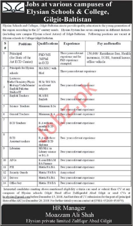 Elysian Schools & College Gilgit Jobs 2019 for Teachers