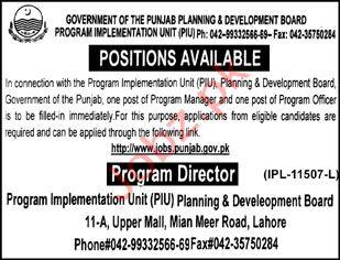 Program Implementation Unit PIU Program Director Jobs 2019