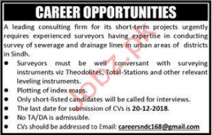 Surveyor Jobs in Private Company