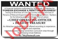 Chief Operating Officer & Head of Treasury Jobs 2019