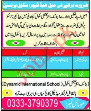 Dynamic International School Jobs in Abbottabad KPK
