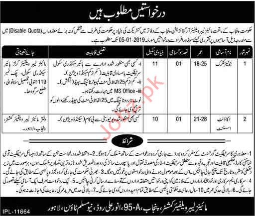 Clerical Jobs in Mines & Mineral Welfare Organization
