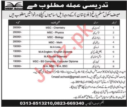 Mesf School Muslim Bagh Balochistan Teaching Jobs 2019