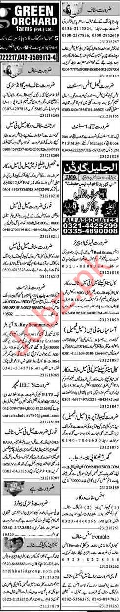 Dunya Sunday Classified Ads 23rd Dec 2018 for Office Staff