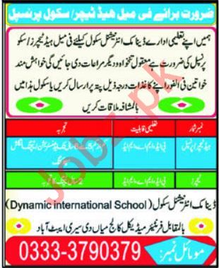 Dynamic International School Abbottabad Jobs 2019 Teachers