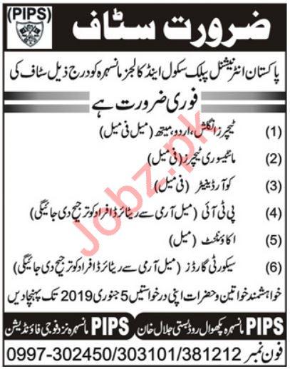 Pakistan International Public School & Colleges Jobs 2019