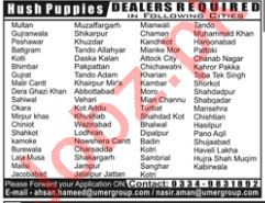 Dealers required at Hush Puppies