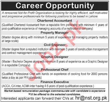 Naimat Saleem Trust Chartered Accountant Jobs