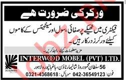 Interwood Mobel Pvt Limited Worker Jobs