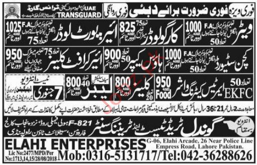 Kitchen Steward Jobs in Transguard  Company Duabi