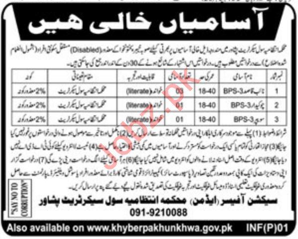 All paper jobs peshawar