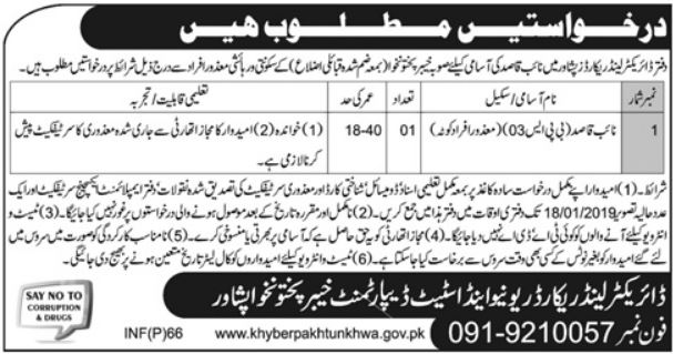 Naib Qasid Jobs in Director Land Record Officer