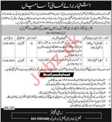 Agriculture Department Jobs 2019 in Faisalabad