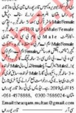 Dar e Arqam School Jobs 2019 in Multan