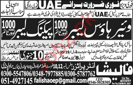 Warehouse Labor & Packing Labor Jobs 2019 in UAE
