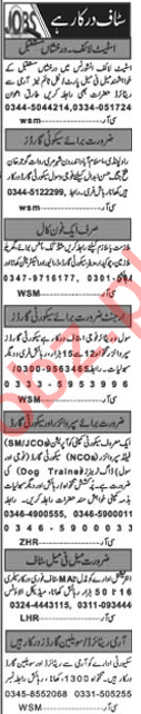 Khabrain Newspaper Classified Jobs 2019 For Islamabad