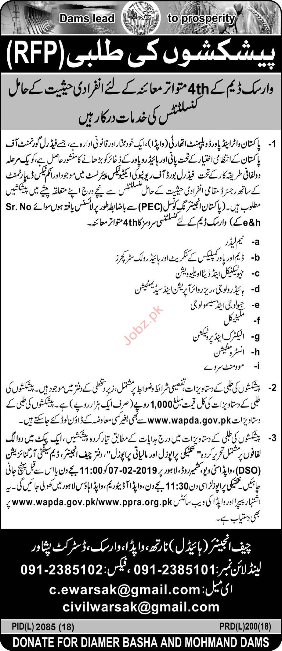 Consultant Jobs in Water & Power Development Authority