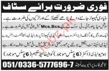 IT Staff Jobs in Taseer Pharma Private Limited