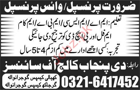 Principal Jobs in The Punjab College of Sciences