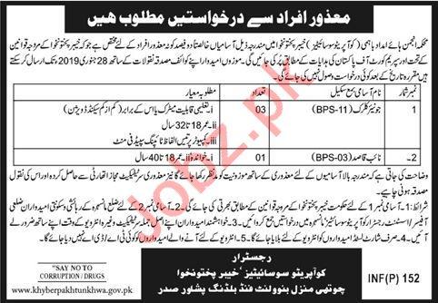 Junior Clerk & Naib Qasid Jobs 2019 in Peshawar KPK