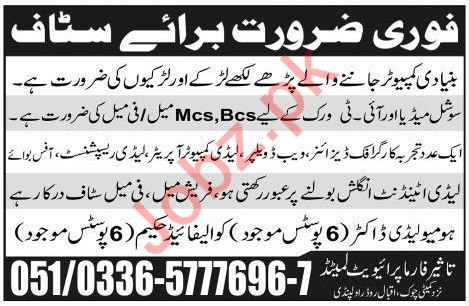 Taseer Pharma Pvt Ltd Computer & IT Jobs 2019 in Rawalpindi