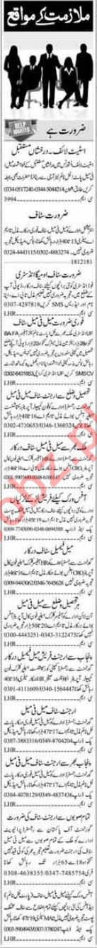 Office Staff Jobs Career Opportunity in Islamabad