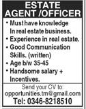 Estate Agent Jobs in Private Company