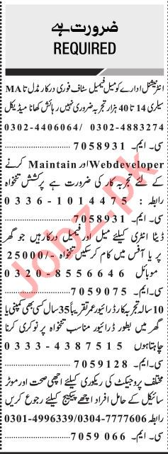 Jang Sunday Classified Ads 13th Jan 2019 for Multiple Staff