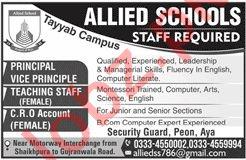 Allied Schools Tayyab Campus Jobs 2019