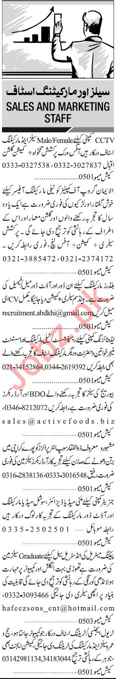 Jang Sunday Classified Ads 13th Jan 2019 for Sales Staff