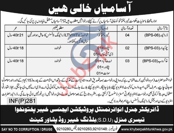 Environmental Protection Department KPK Driver Jobs
