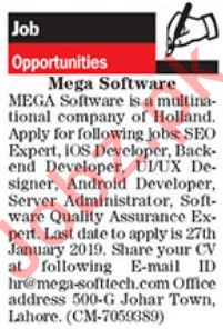 SEO Expert Jobs at  Software Firm