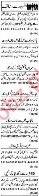 Daily Nawaiwaqt Classified Ads 13th Jan 2019