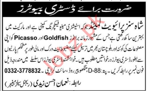 Shahsons Pvt Ltd Distributor Job Opportunities 2019 Job