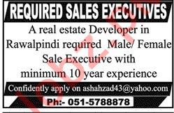 Sales Executive Jobs at Real Estate Company