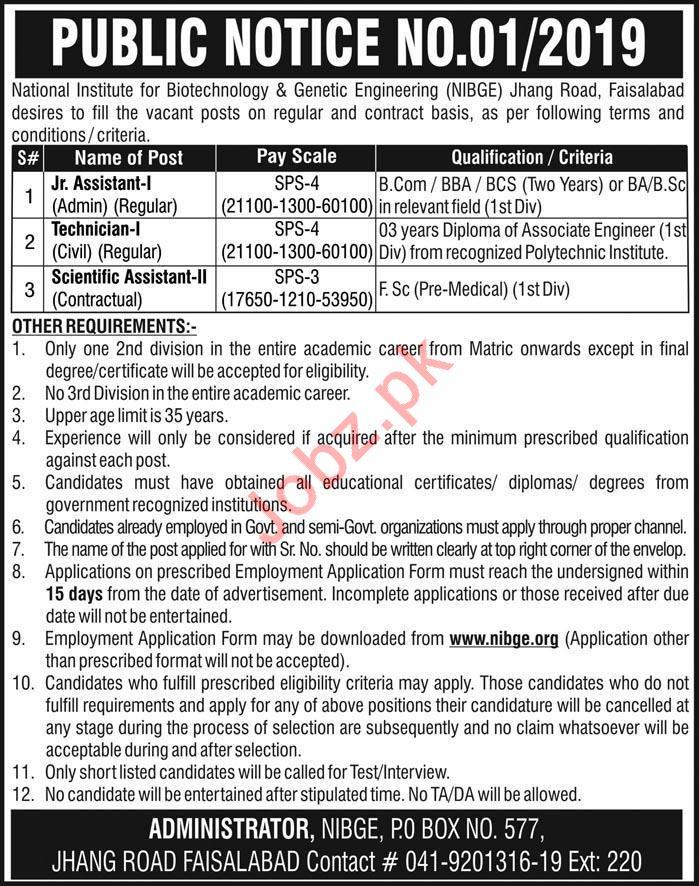 NIBGE Faisalabad Jobs 2019