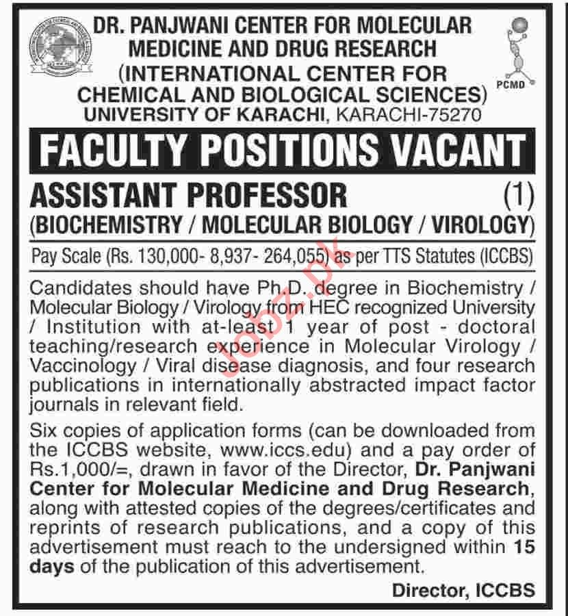 International Center For Chemical & Biological Sciences Jobs