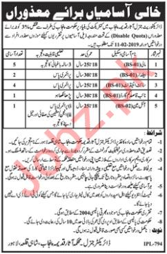 Archaeology Department Jobs in Lahore