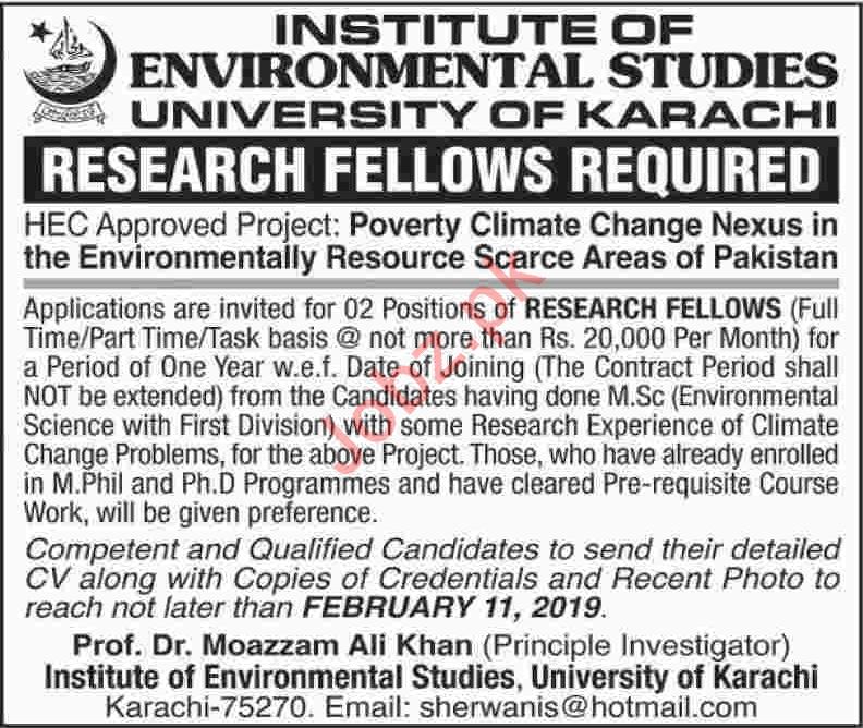 Institute of Environmental Studies Research Fellows Jobs