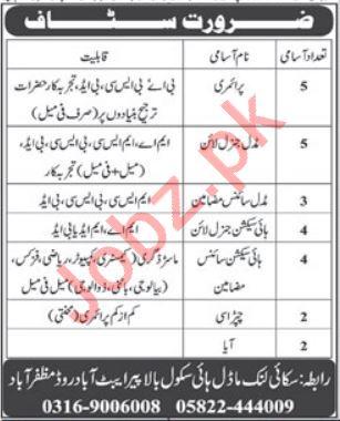 Sky Link Model High School Muzaffarabad Jobs 2019
