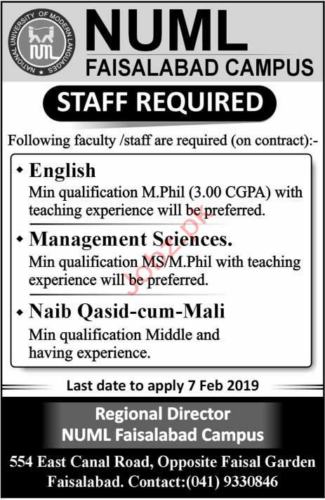 NUML National University of Modern Languages Jobs 2019