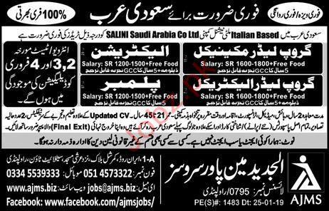 Salini Saudi Arabia Company Limited Jobs In Saudi Arabia