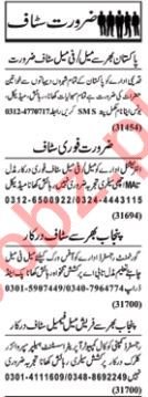 Daily Nawaiwaqt Newspaper Classified Jobs 2019 For Lahore