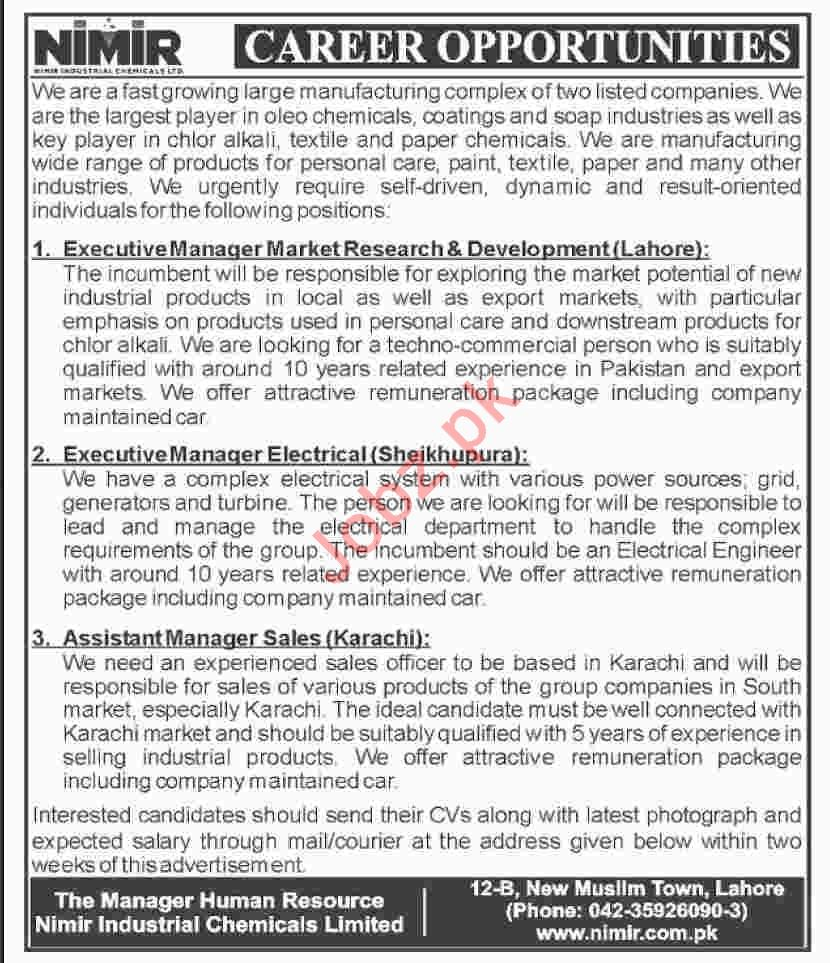 Nimir Industrial Chemicals Ltd Executive Manager Market Job